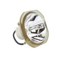 لامپ ویدئو پروژکتور  مدل ELPLP45 اپسون